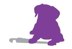 Happy Dog Plumbing Limited
